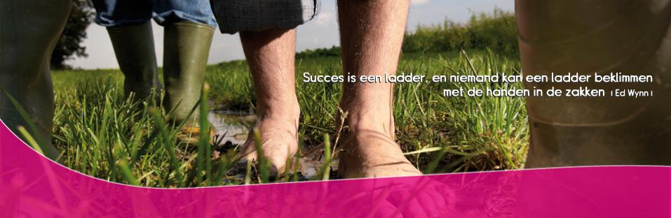 PW succes